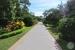 Iberostar-Ensenachos-Walkway