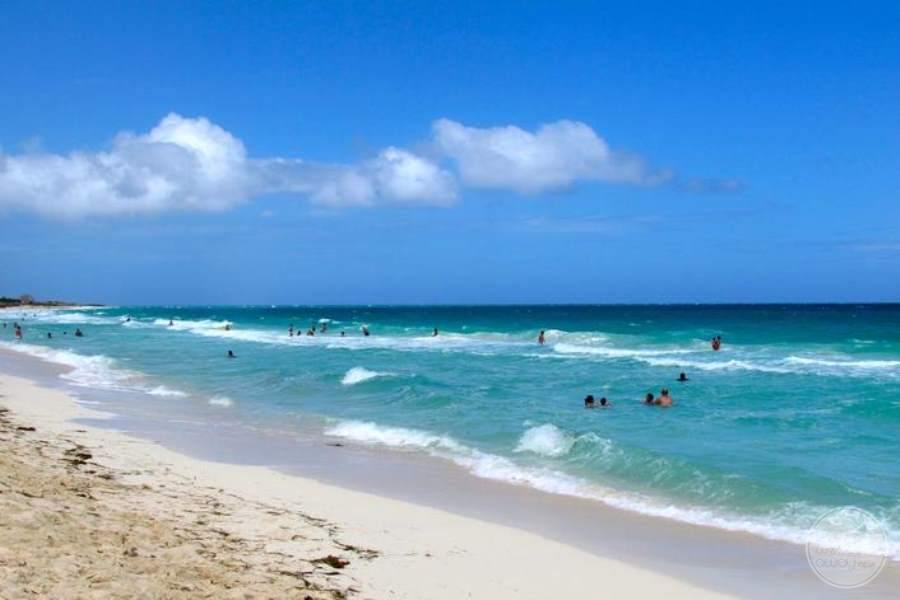 Melia Las Dunas Beach 2