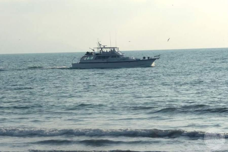 Hard Rock Vallarta Deep Sea Fishing