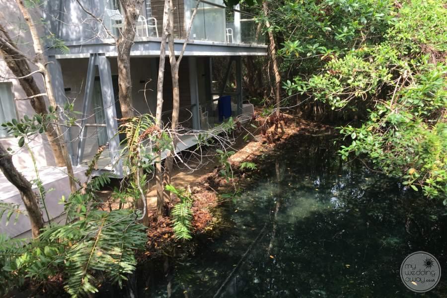 Sandos Caracol Mangrove