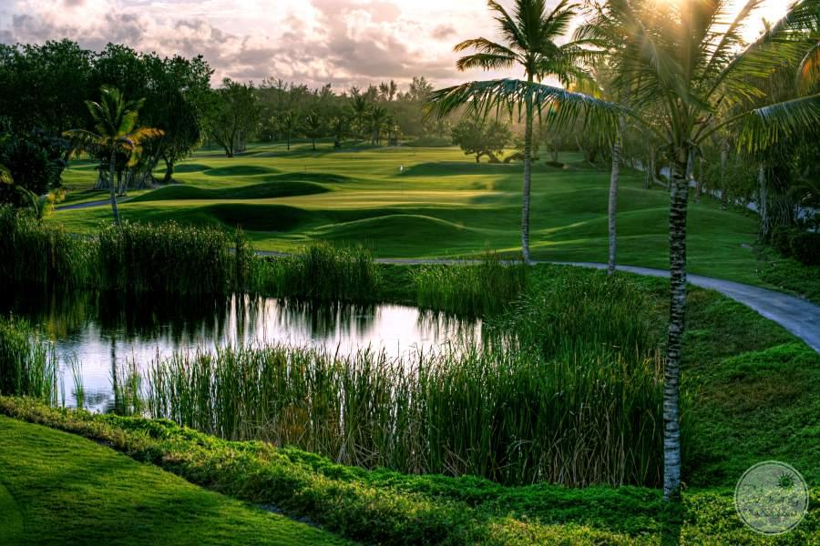 Barcelo Bavaro Beach Golf
