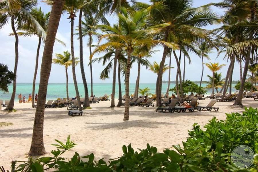 Barcelo Bavaro Palace Deluxe Beach 2