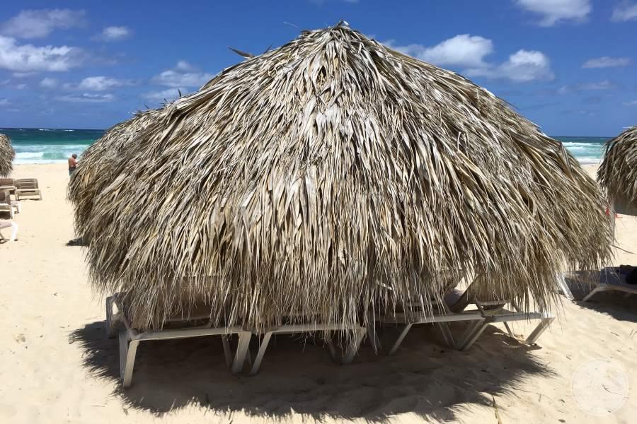 Hard Rock Hotel Punta Cana Beach Umbrella