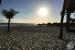 Hard-Rock-Hotel-Punta-Cana-Beach-View