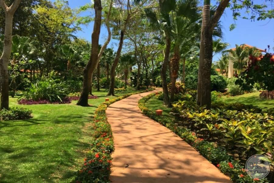 Iberostar Hacienda Dominicus Walkway