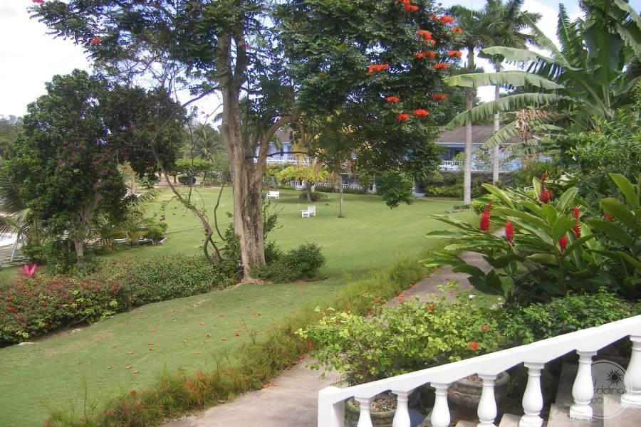 Jamaica Inn Grounds 2