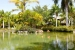 Melia-Caribe-Tropical-Flamingo-Pond