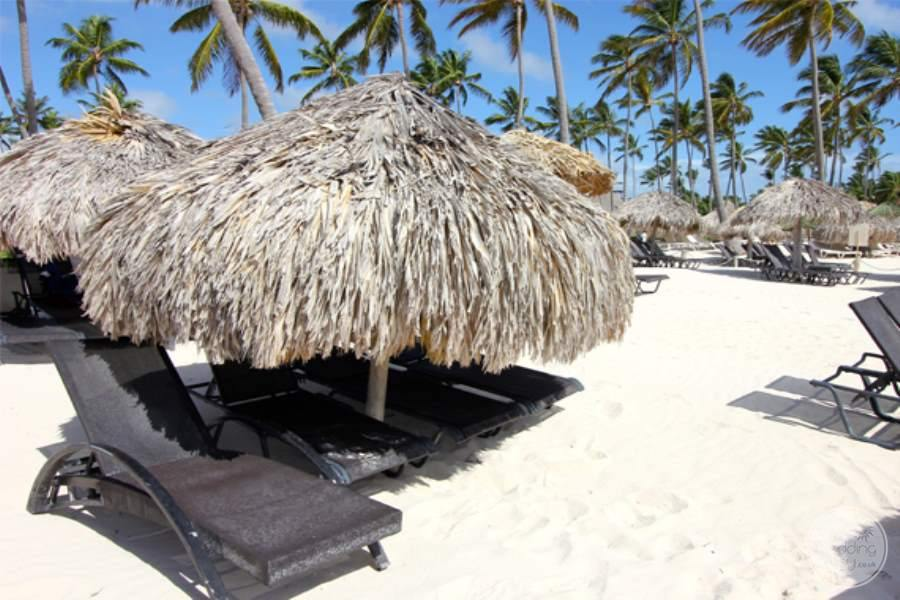 Now Larimar Beach Lounge Chairs