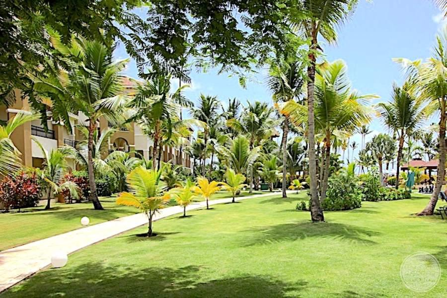 Main walkway to the room buildings with surrounding grass palm trees and lush tropical plants