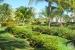 Paradisus-Princesa-Del-Mar-Grounds