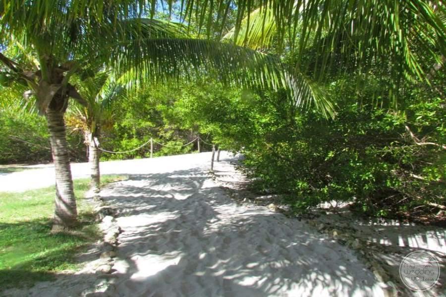 Paradisus Princesa Del Mar Walkway