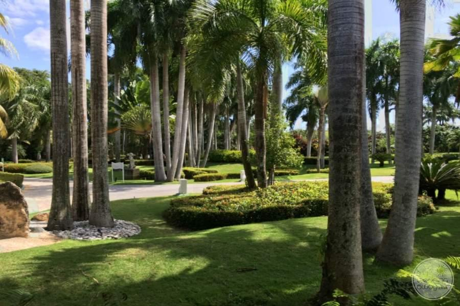 Paradisus Punta Cana Grounds 8