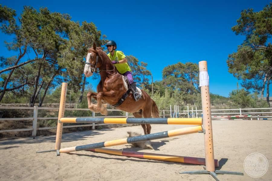 Horse Jumping in Cypress