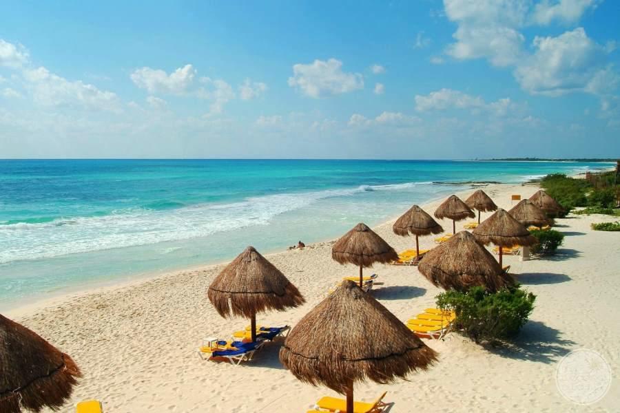 Iberostar Paraiso Beach Umbrellas