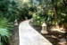 Iberostar-Paraiso-Del-Mar-Walkway