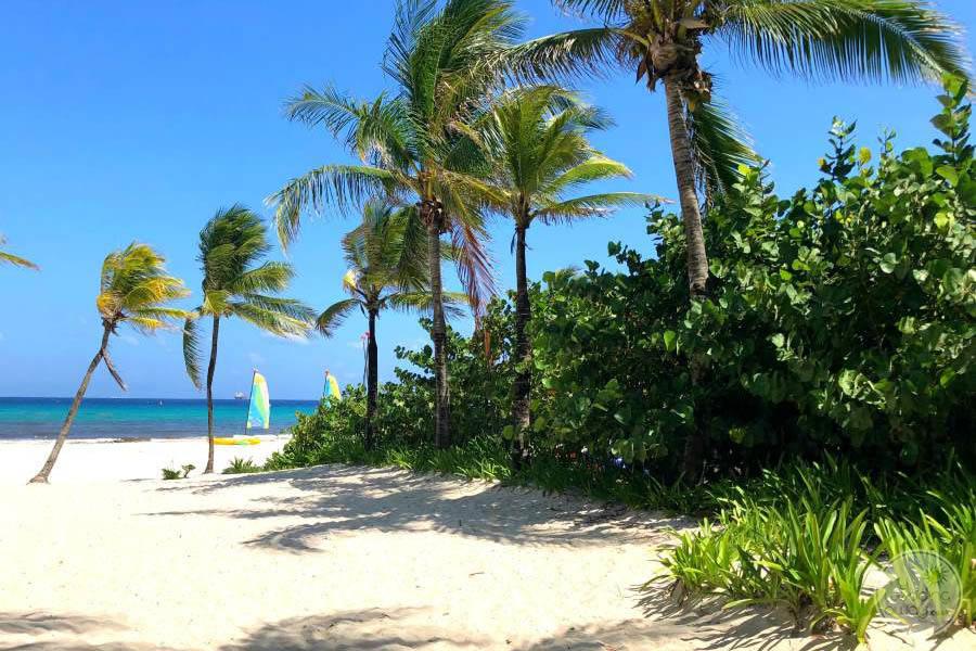 Iberostar Quetzal Beach Area