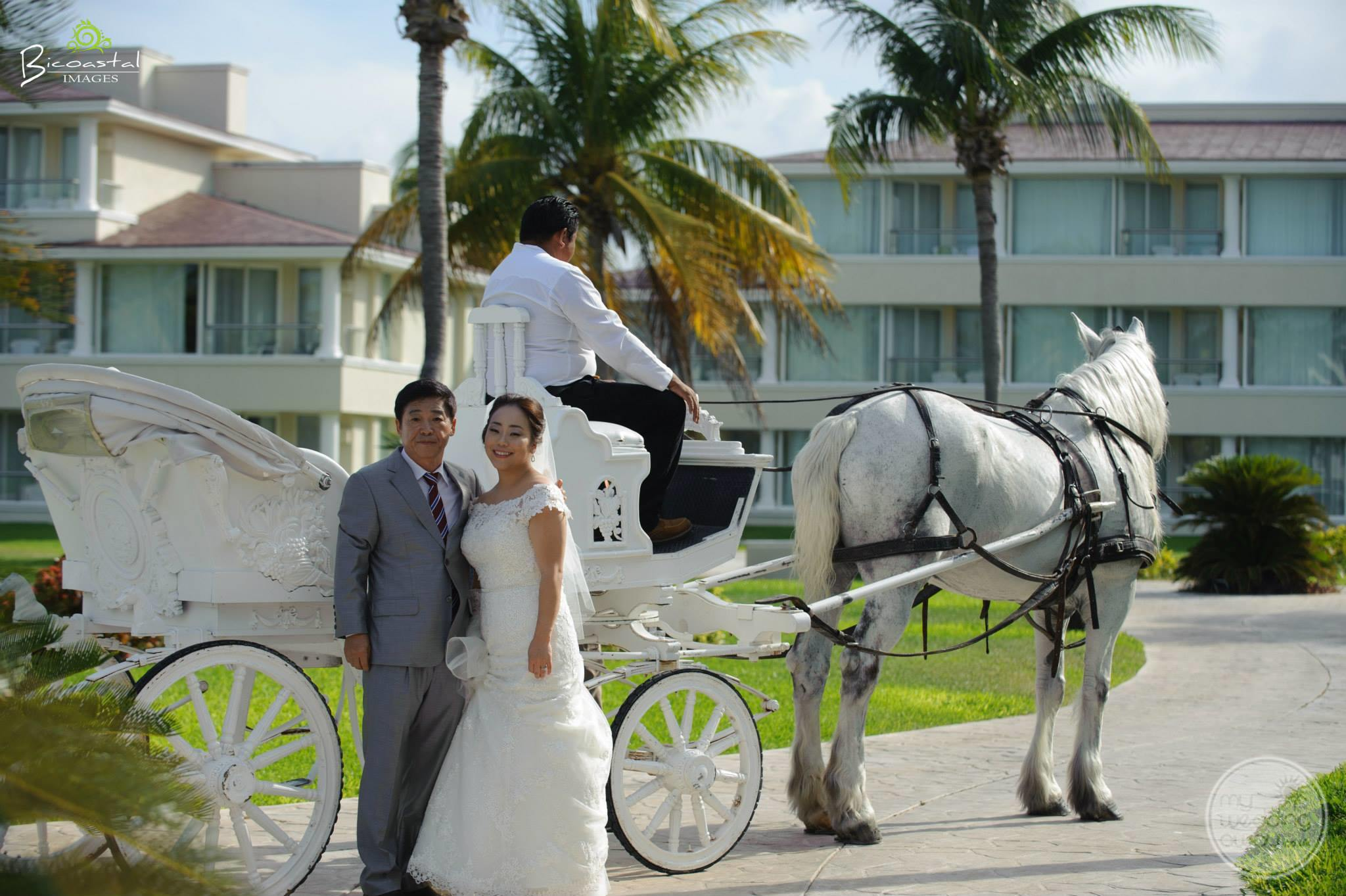 Moon Palace Wedding Carriage Ride