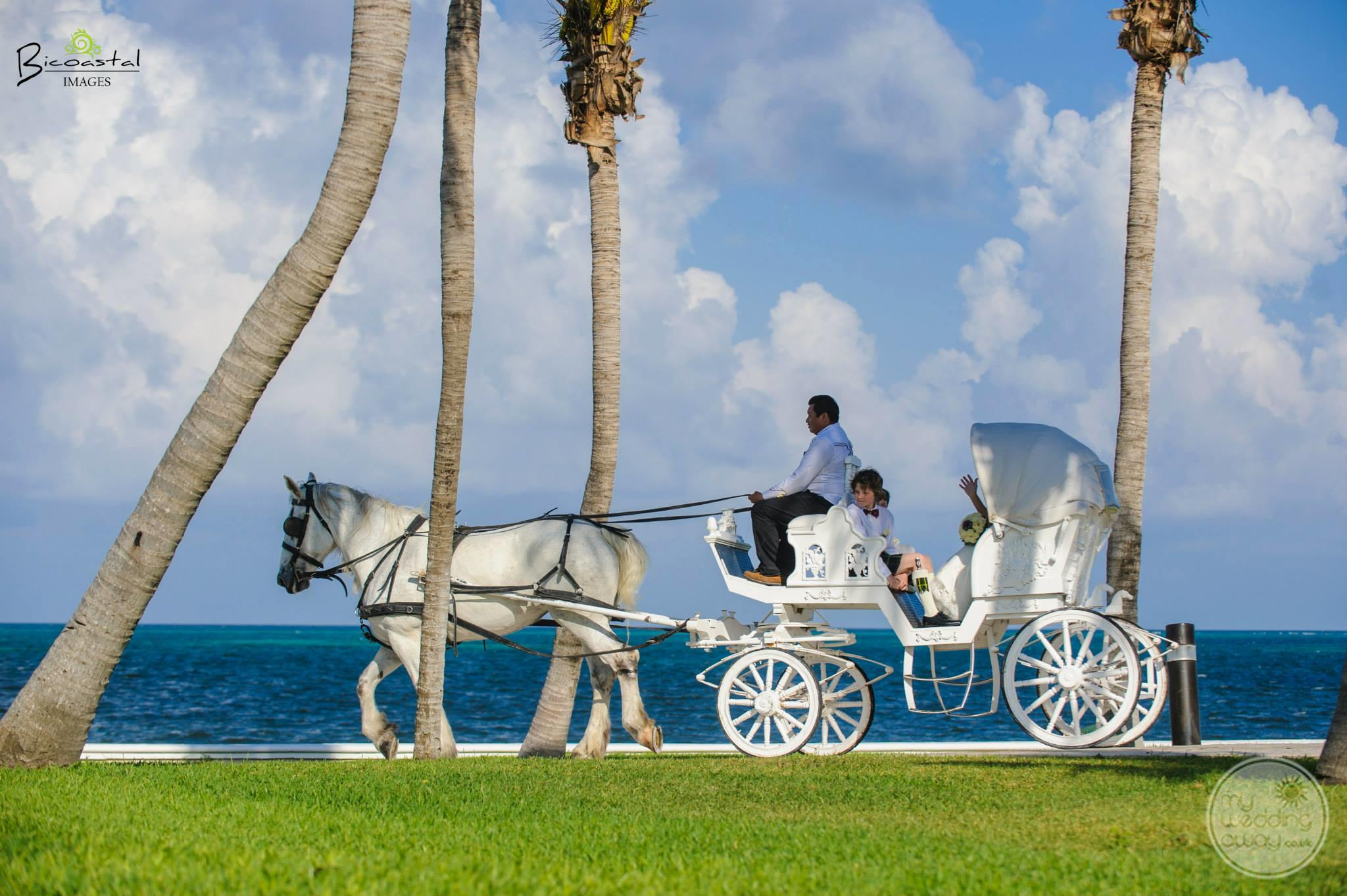 Moon Palace Wedding Carriage