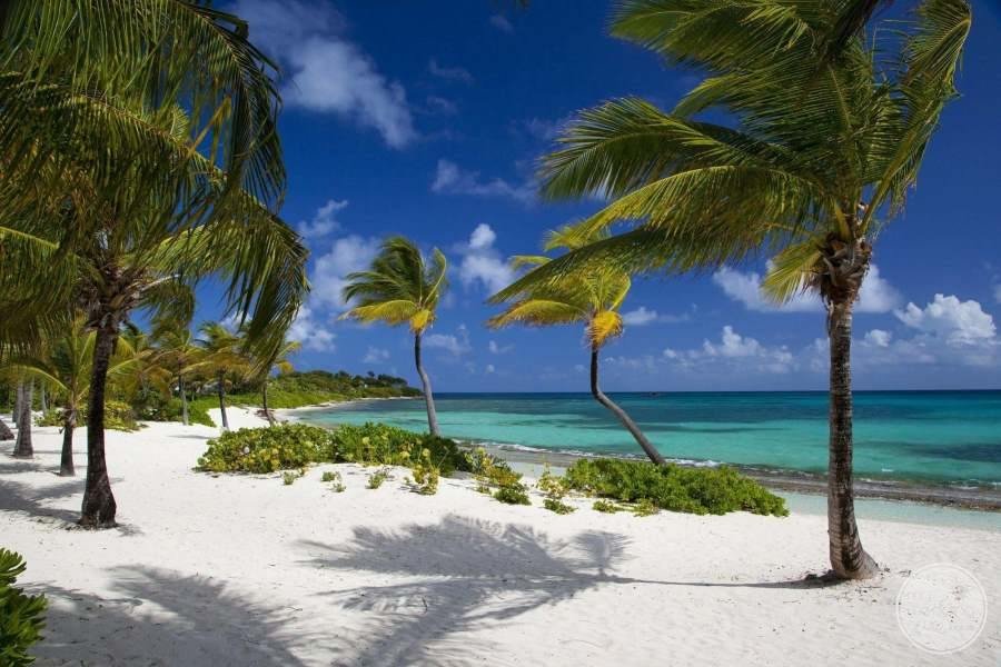 Jumby Bay Antigua Beach View