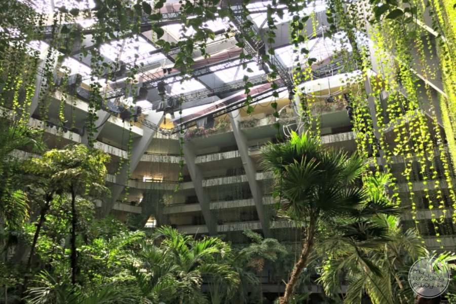 Occidental Grand Oasis Atrium