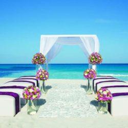 Secrets The Vine Beach Wedding Area