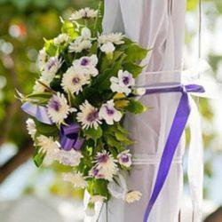 Mango Bay Destination Wedding