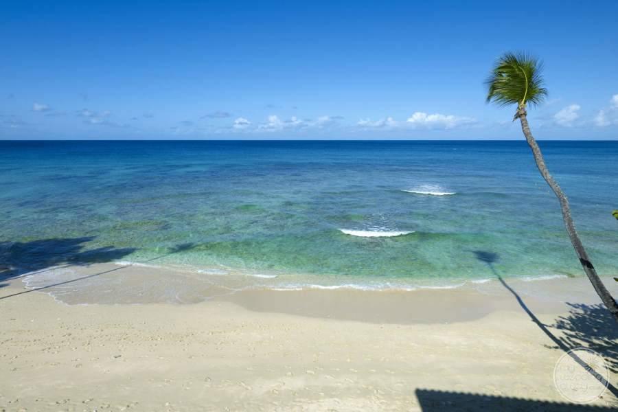 Tamarind Barbados Beach Views