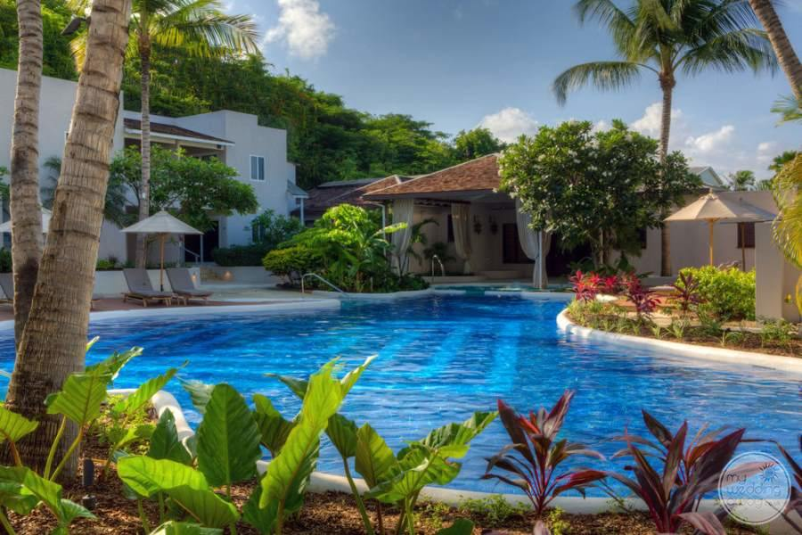 main pool area with surrounding landscaping and florals