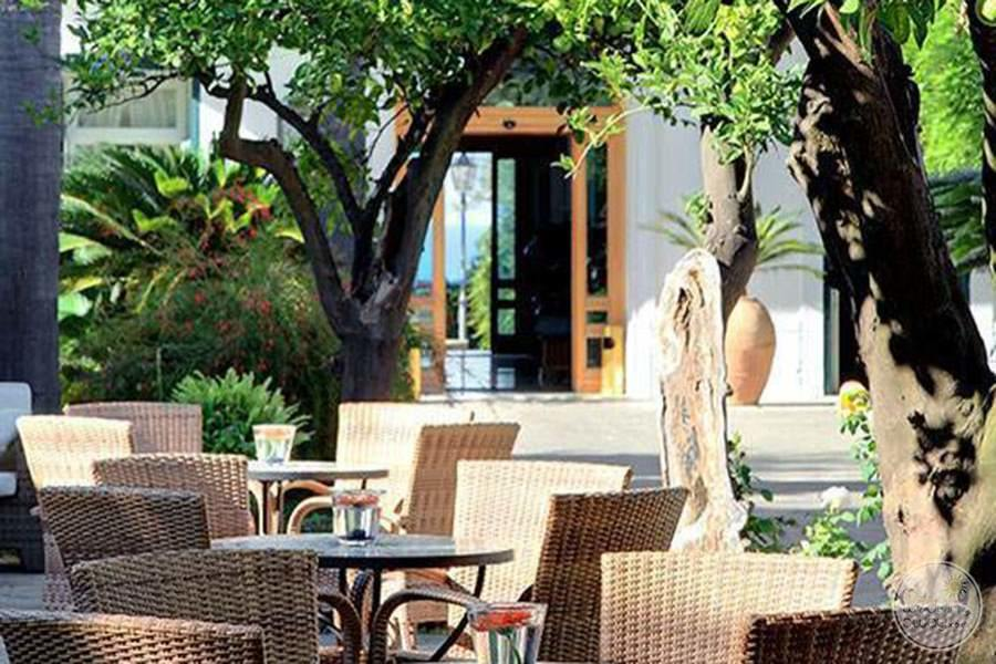 Outdoor tables for dining with surrounding palm trees and floral shrubs