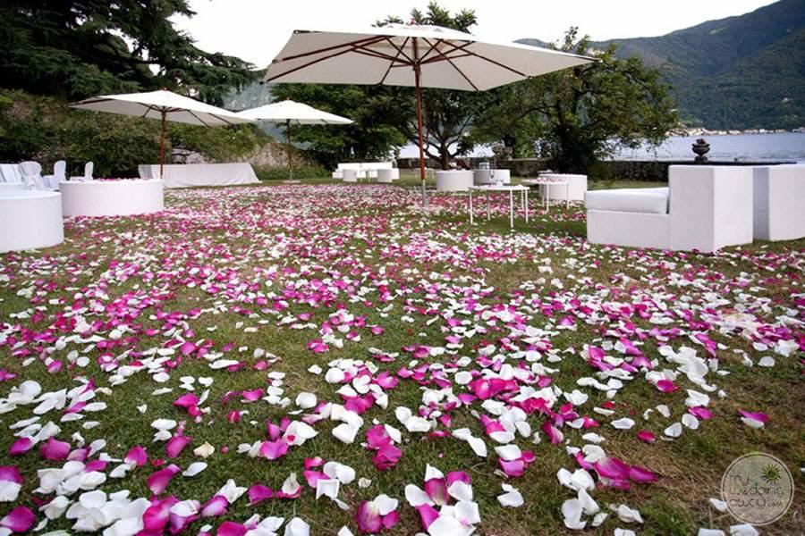 Beautiful outdoor receptionGrassy area with flower petals everywhere