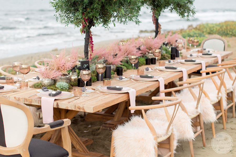 Abaton Island Resort Beach Wedding Reception