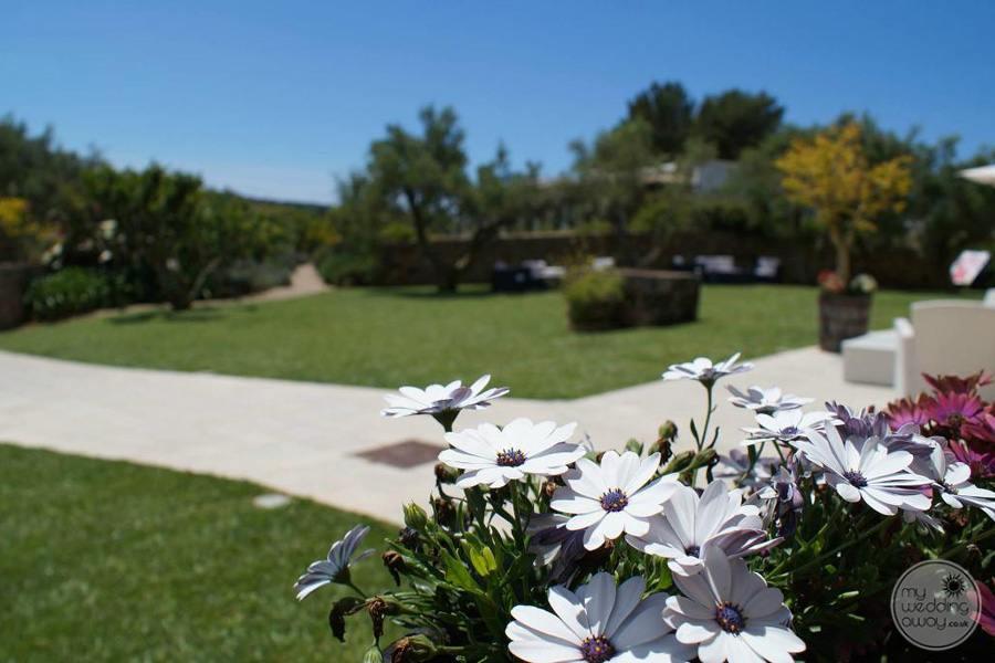 Hotel flower bouquet in garden on resort grounds