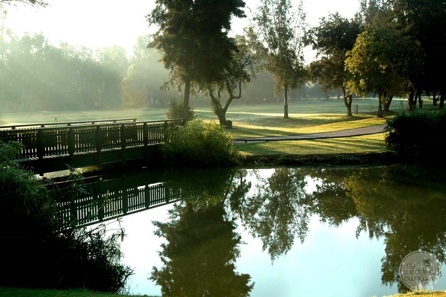 Penina Hotel and Golf Resort golf course bridge and pond