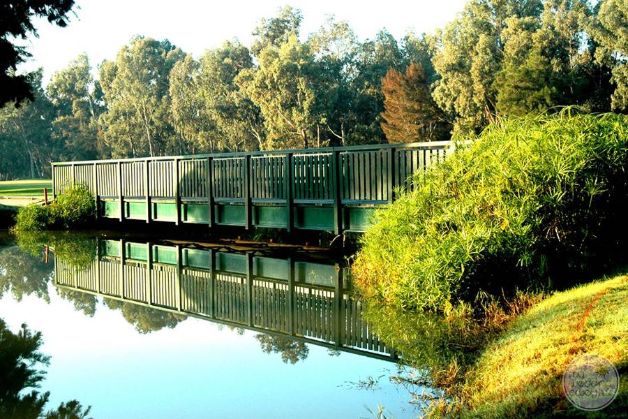 Penina Hotel and Golf Resort golf course scenic bridge