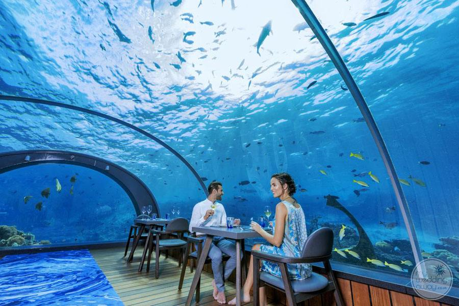 Hurawalhi Island Resort Underwater Restaurant