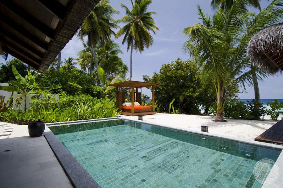 Plunge Pool by the beach with surrounding palm trees