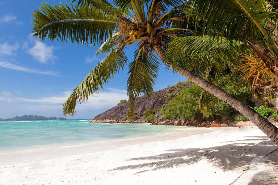 Hotel L'Archipel Seychelles beachfront