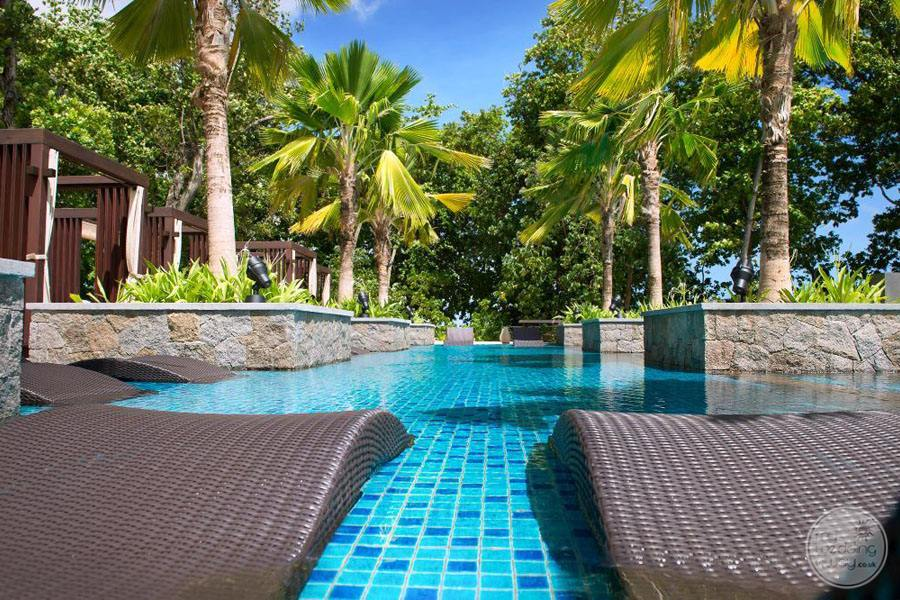 pool loungers by the main pool