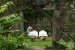 Anse-Chastenet-spa-treatment-at-old