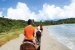 Coconut-Bay-beach-horseback-riding