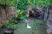 Jade-Mountain-wedding-couple-in-garden