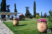 Guadalupe-Tuscany-Resort-Terrace-and-grounds