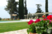 Guadalupe-Tuscany-Resort-pool-and-grounds