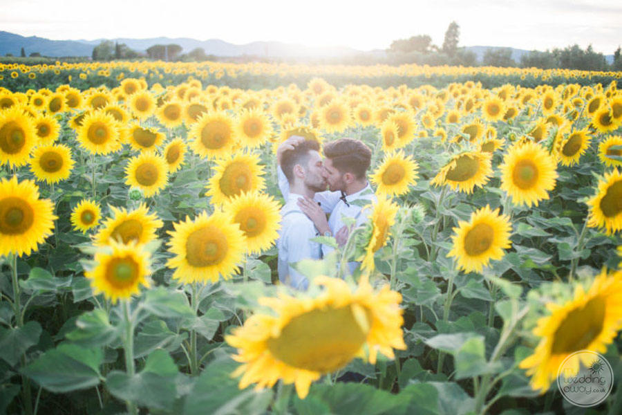 Same Sex Wedding in Field of Sunflowers