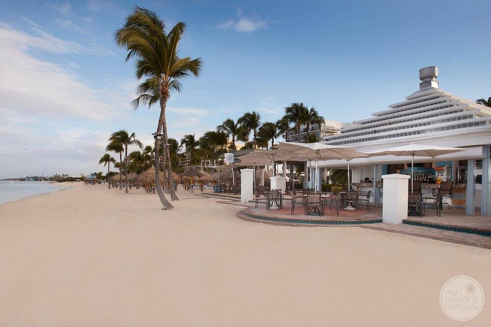 restaurant located right on the beach with palm trees and ocean views