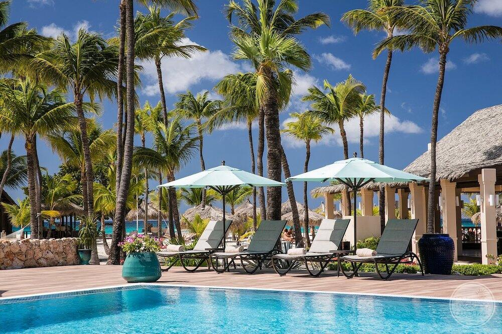 Surrounding deck chairs to the main pool with lush beautiful green palm trees in the background