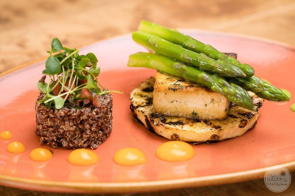 Vegan friendly food options with a beautiful plated food display