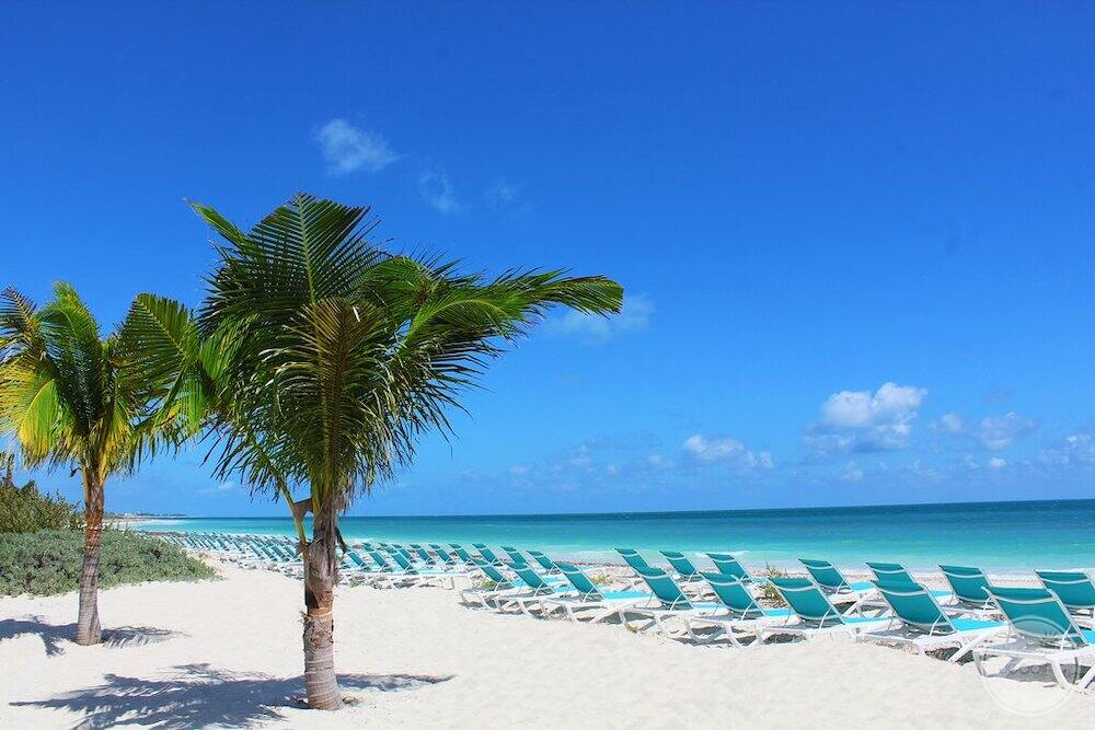 Main beach front with a white sand beach green palm trees blue lounge chairs blue sky and green ocean