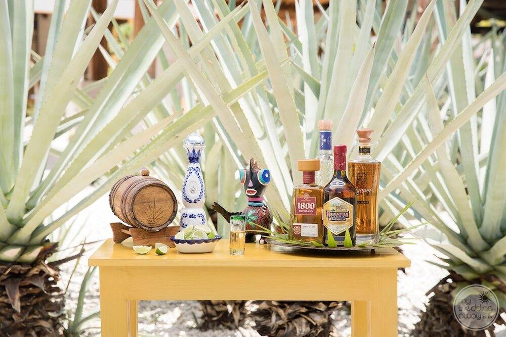 Tequila tasting station located in the Mexican restaurant